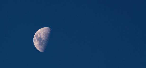 Lunar crop
